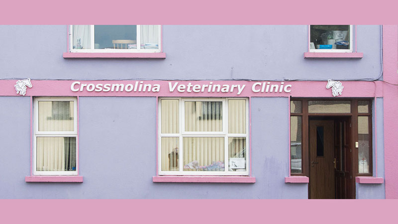 Crossmolina Veterinary Clinic